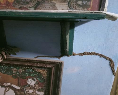 Pest Control Services in Perambur